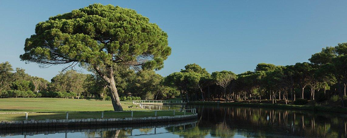 activitats/golf/golf-de-pals-lake-hole-8-jacobsjoman.jpg