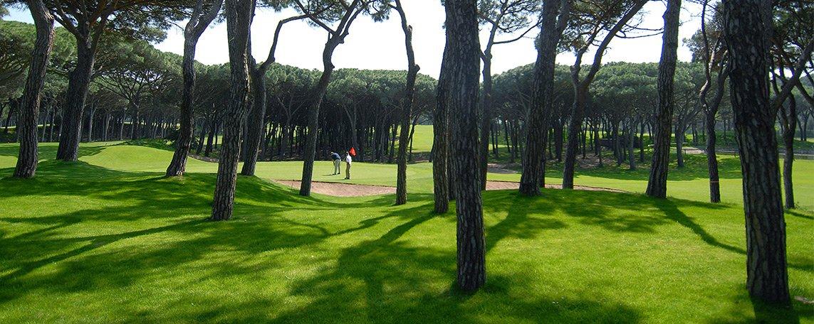 activitats/golf/golf1.jpg