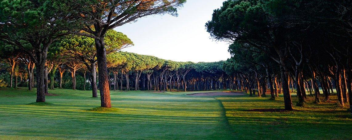 activitats/golf/golf7.jpg