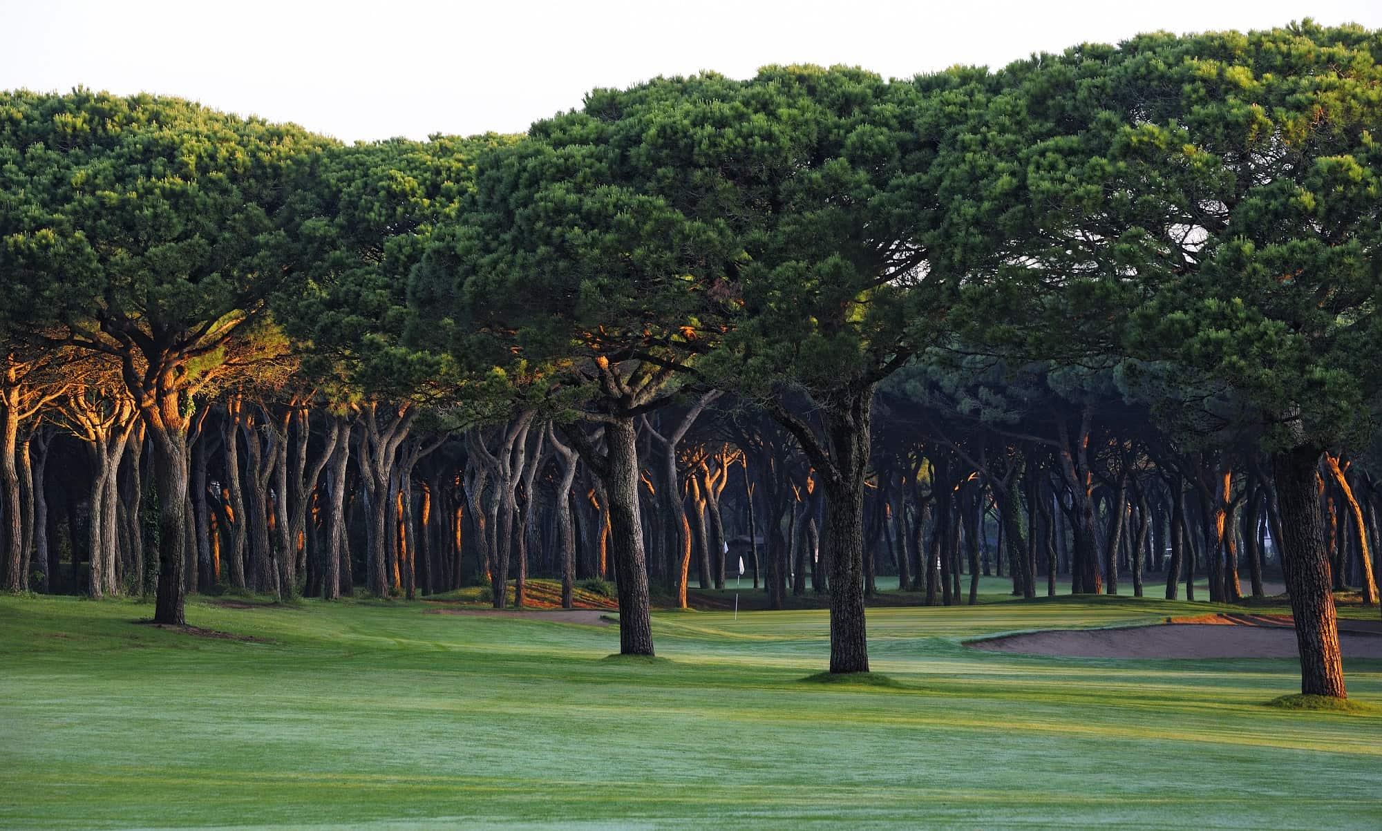 activitats/golf/gpp_7_long_2000pxls.jpg
