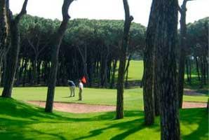 noves_imatges/golf-responsive.jpg